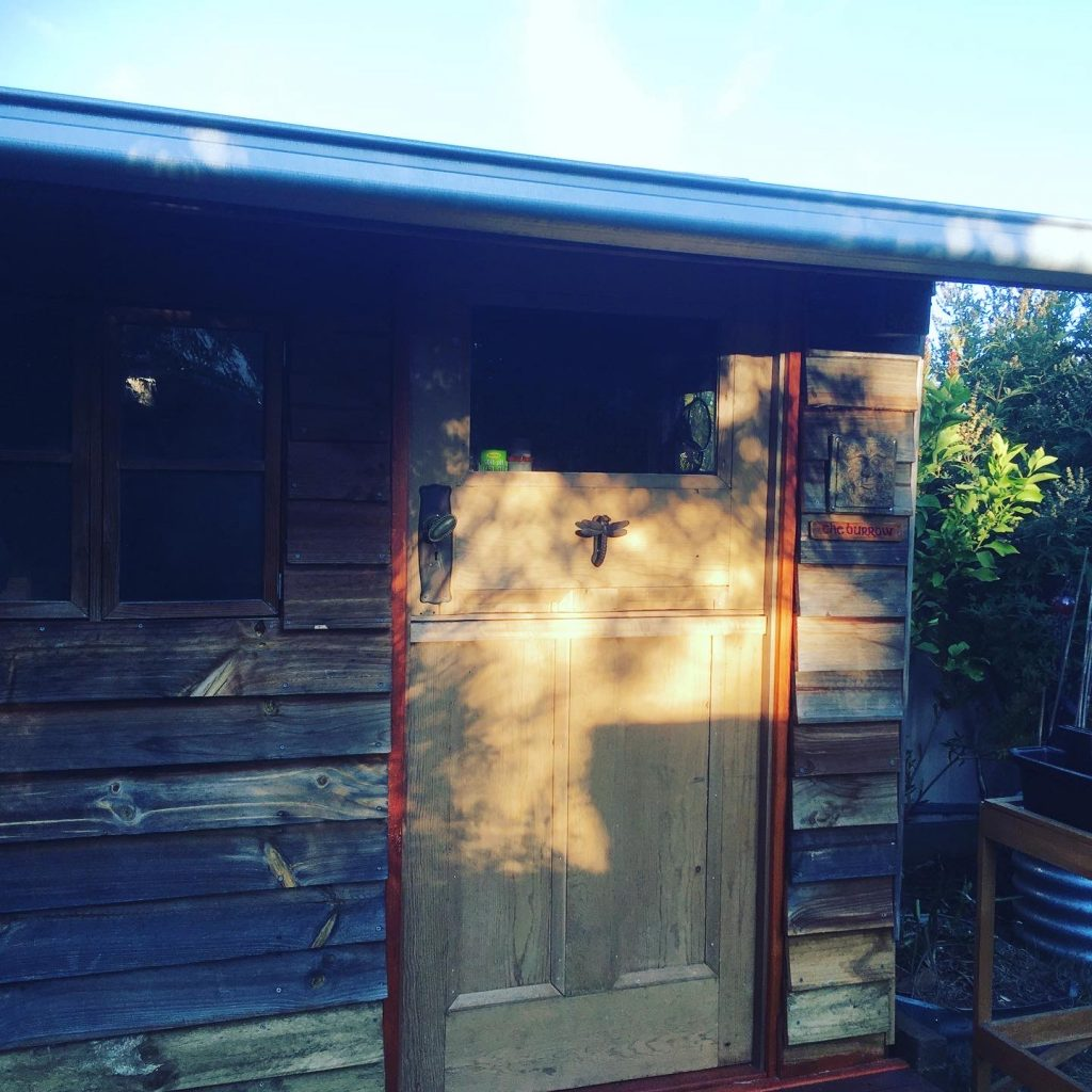 A photo of the potting shed with evening sun lighting the door.